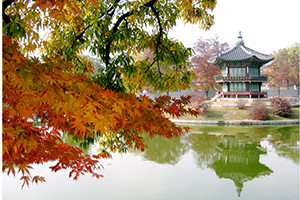 Du lịch Hàn Quốc: Seoul – Everland – Nami – Seoul